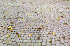Paved sidewalk with autumn foliage Royalty Free Stock Photography