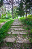 Paved stairs Stock Images