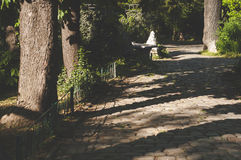 Paved stone walkway in the park Royalty Free Stock Photography