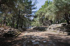 Paved street in ancient city of Phaselis. Located in pine forest in Antalya Turkey Stock Photo
