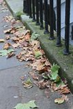 Paved street with fallen autumn leaves. Paved street, with iron railings and fallen Autumn leaves Stock Image