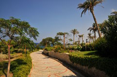 Paved Trail In A Tropical Garden In Cyprus Royalty Free Stock Image