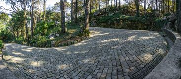 Paved u-shape curve in the forest Stock Photos