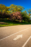 Paved walkway and colorful trees at Druid Hill Park in Baltimore. Maryland stock images