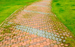 Paved walkway. A paved pathway for walking in gardens Royalty Free Stock Photo