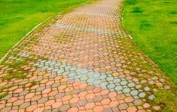 Paved walkway Royalty Free Stock Photo