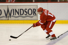 Pavel Datsyuk Controls The Puck Stock Photo