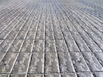 Pavement. Stock Photography