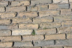 Pavement. With rectangular colored stones laid pavement Royalty Free Stock Images