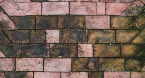 Pavement brick. A top view of pavement brick with water stain background stock images