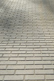 Pavement bricks Royalty Free Stock Image