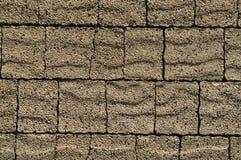 Pavement brown bricks texture Stock Photos