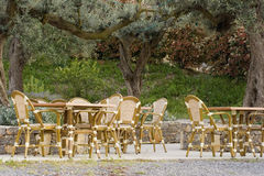 Pavement cafe under an old olive tree Stock Photos