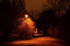 Pavement in the dark night park Royalty Free Stock Photography