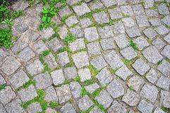Pavement with grass Royalty Free Stock Images