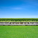 Pavement and grass. Pavement and green grass on blue sky Royalty Free Stock Photos