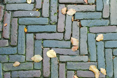 Pavement. Grungy interlocking brick pavement for textured background Royalty Free Stock Photography