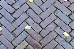 Pavement. Grungy interlocking brick pavement for textured background Stock Image