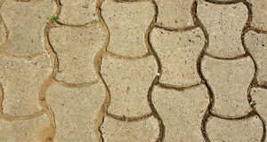 Pavement Joan Brossa Gardens for funds. Barcelona Royalty Free Stock Photography