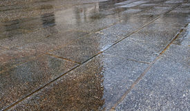 Pavement in rain. Stock Images