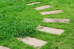 Pavement slab on the grass Royalty Free Stock Images