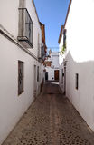 Pavement street of Carmona Stock Image