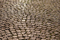 The pavement in sunlight. Cobblestone road in the  sunlight Stock Photography