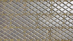 Pavement tiles in a garden Royalty Free Stock Photos