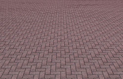 Pavement tiles texture Royalty Free Stock Photography