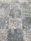 Paver κήπων αφηρημένο σχέδιο Στοκ φωτογραφία με δικαίωμα ελεύθερης χρήσης