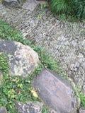 Paver κήπων αφηρημένο σχέδιο Στοκ Εικόνες