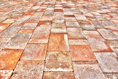 Paver perspective Stock Photography