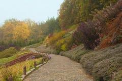 Paver road in multi colored garden in autumn. Autumn garden scene with coniferous trees scene Stock Image