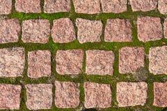 Pavers гранита с травой Стоковое Фото