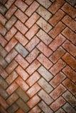 Pavers do tijolo cobertos na camada de sujidade Imagem de Stock Royalty Free