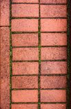 Pavestone with the moss between the bricks Stock Photo
