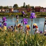 Pavia Borgo Ticino river. Pavia city in Milan Royalty Free Stock Photos