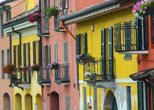 Pavia (Italien): färgrika hus arkivbild