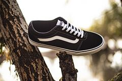Vans Old Skool shoes on a tree near the river