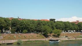 Pavia linia horyzontu z San Michele bazyliką i Borromeo szkołą wyższą za drzewami, Włochy zbiory wideo