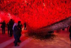 Pavilhão de Japão, 56th Veneza bienal Imagem de Stock Royalty Free