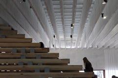 Pavilhão nórdico, jardins de Bienal, Veneza, Itália Imagem de Stock Royalty Free