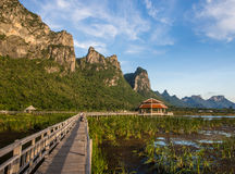Pavilion and bridge through the marsh. And reeds with moutain background Stock Image