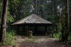 Pavilion central jungle Royalty Free Stock Photo