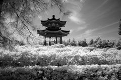 Pavilion at Giant Wild Goose Pagoda, China, Xian Royalty Free Stock Photo