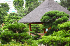 Pavilion and green trees Stock Image