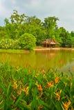 The pavilion of lakeside Royalty Free Stock Photo
