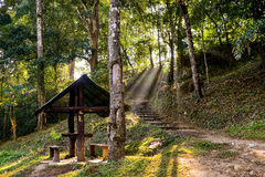 Pavilion in Nature Trail. The pavilion in Nature Trail with sunshine in the morning Royalty Free Stock Photos