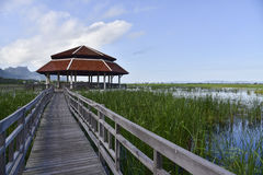 The pavilion and old wooden bridge path on lagoon Royalty Free Stock Images