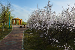 The pavilion and path in spring Royalty Free Stock Photography